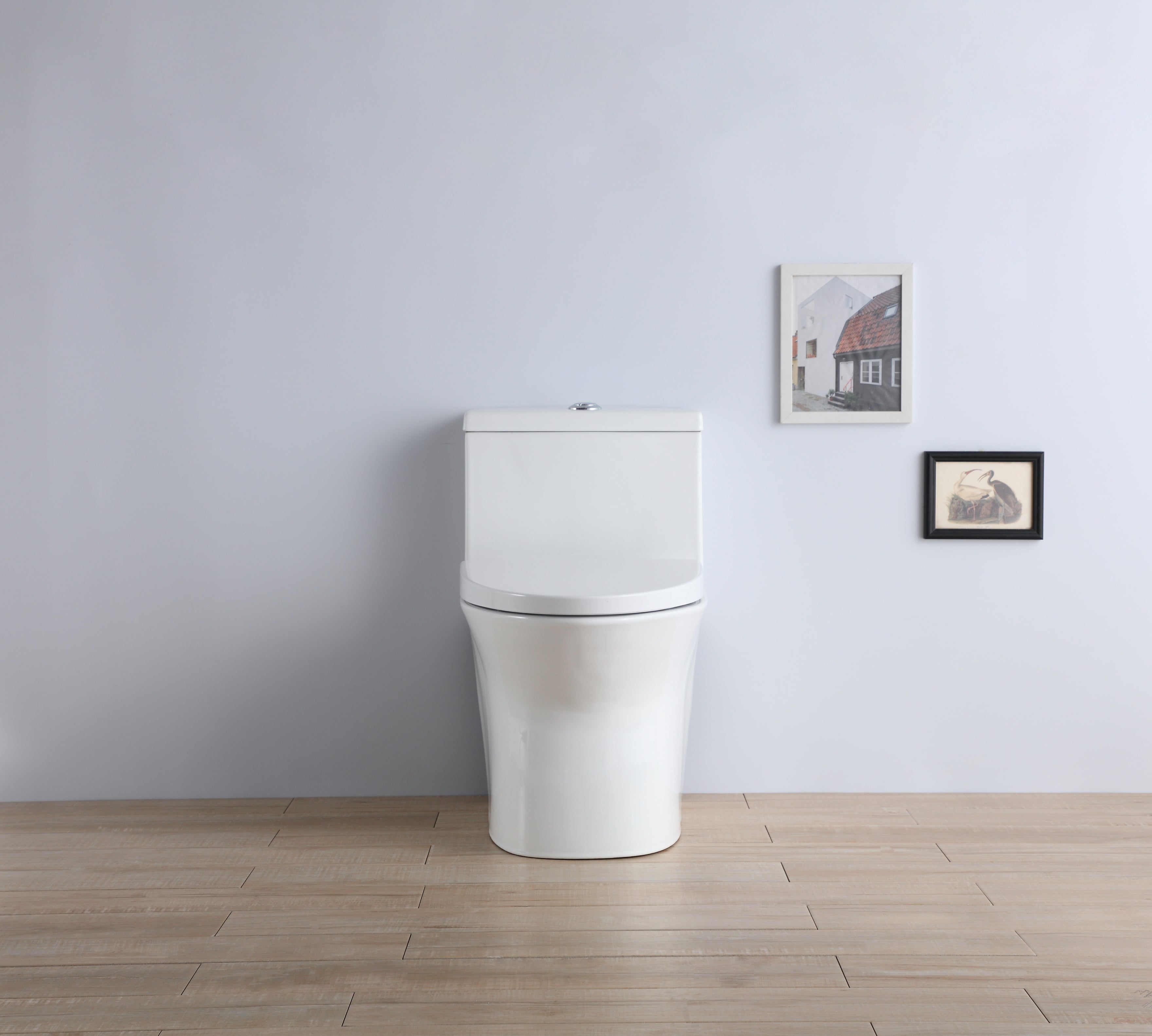 One Piece Dual Flush Toilet Completed with Soft Close and Removable Toilet Seat 950