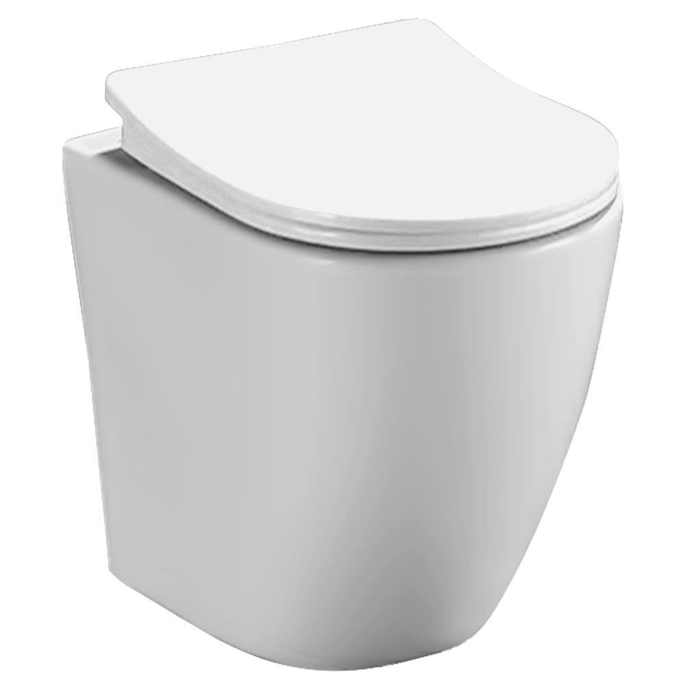 Wall Mounted Elongated Toilet Bowl 8010