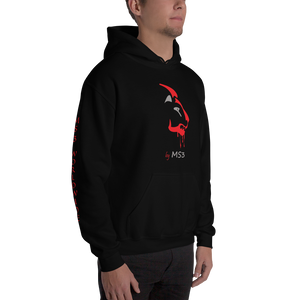 """Red Face Lion"" Hoodie"