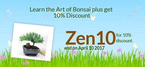 Art of Bonzai
