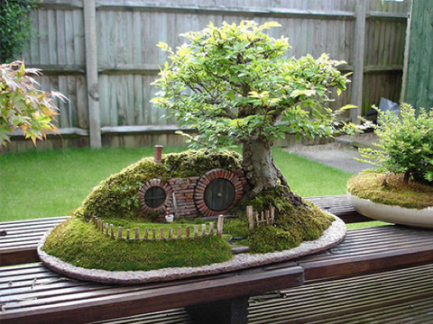 Bonsai home garden decor ideas