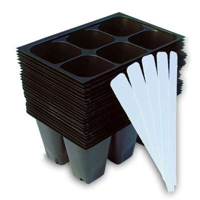 Seedling Starter Trays, 144 Cells: (24 Trays; 6-cells Per Tray), Plus 5 Plant Labels by Industry Standard Grower's Supply - 9GreenBox