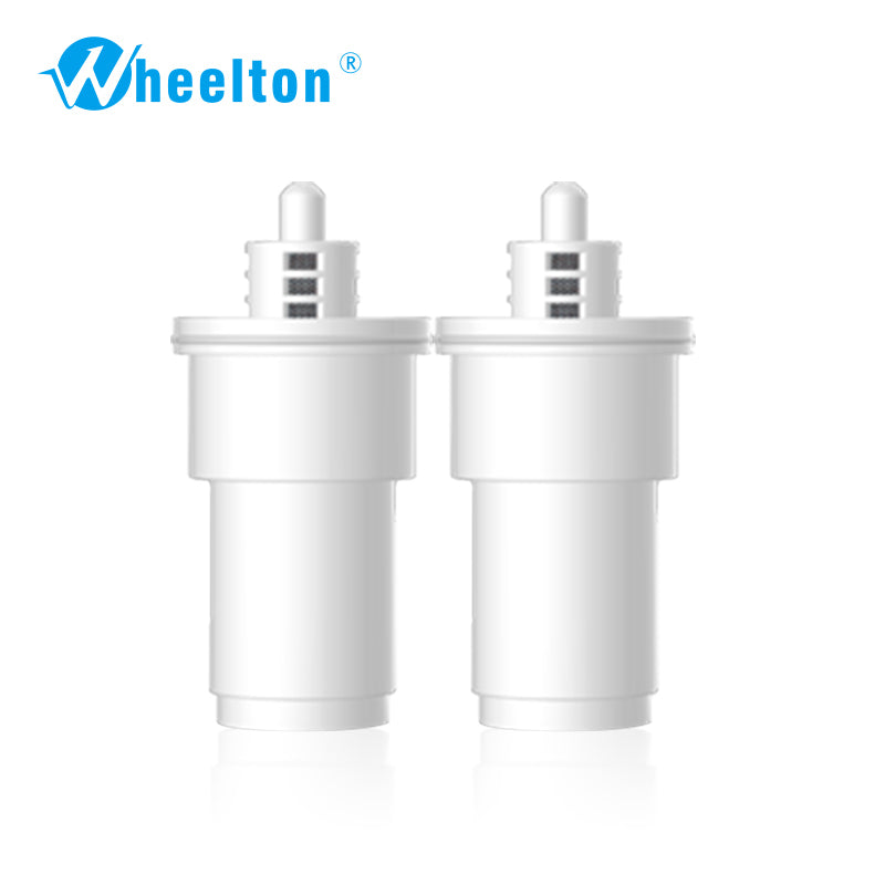 5-stage Pitcher Cartridge Filter (2Pcs)