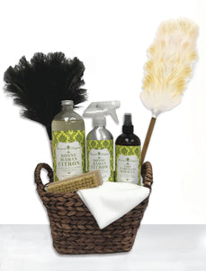 Dusting and Polishing Kit