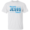 Image of What Would Jesus Tweet?