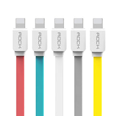 Flat USB Cable Fast Charger and Data Sync for iPhone and iPad