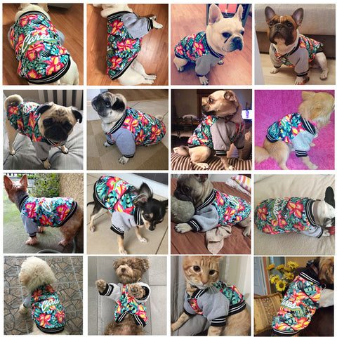 Flowery Winter Jacket for Small Dogs