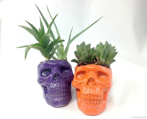 Happy Gardens - Creepy Skull Planters