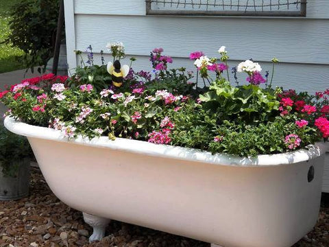 A vintage tub is stuffed with flowers.