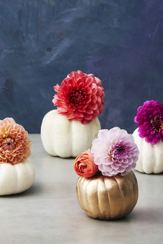 Happy Gardens - Pumpkin Flower Pots
