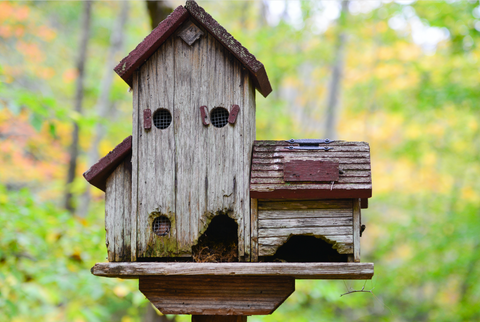 old style bird house