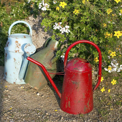 Happy Gardens - Vintage Watering Can