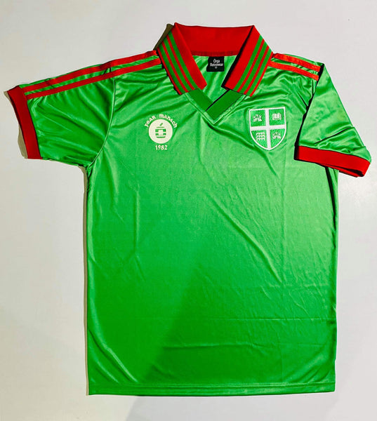 Fermanagh 82 jersey