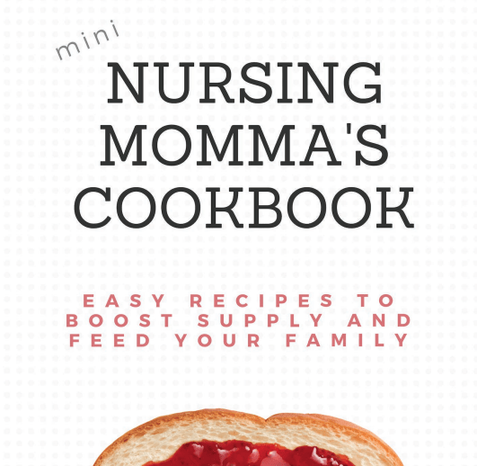 Nursing Cookbook Mini