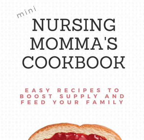 Nursing Mama's Cookbook from Undercover Mama
