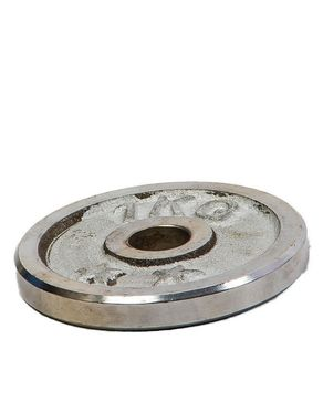 Ingenious Gadgets Weight Plate Chrome - 1 KG - Silver