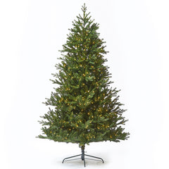 10ft Carolina Fraser Fir Tree w/ WW LED Lights