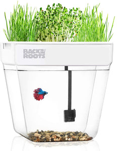 Back to the Roots Water Garden,  A Self-Cleaning Fish Tank That Grows Food
