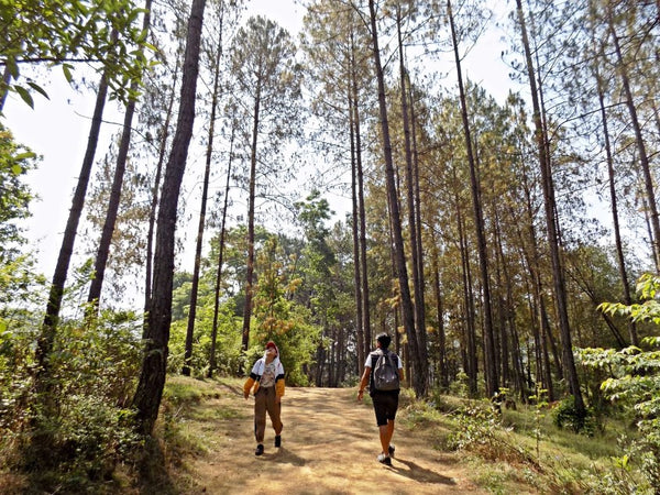 Summer Hiking Tips: How to stay cool while hiking?