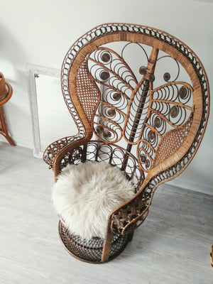 Peacock Chair - Vintage Butterfly