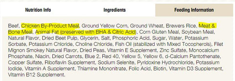 common pet food ingredients, rendering