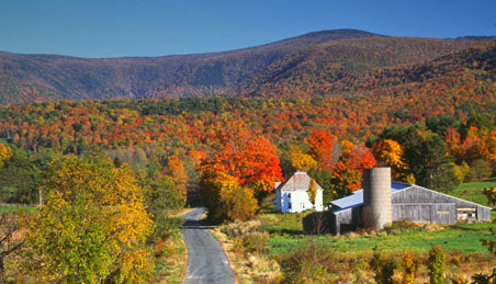 Berkshires Tours