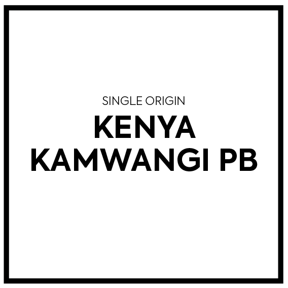 Single Origin - Kenya Kamwangi Peaberry