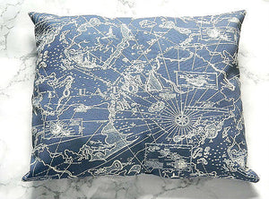 Navy World Map Pillow Ism Chick