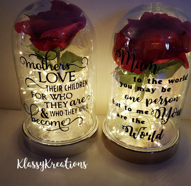 DOME LED LIGHTS with flower and feathers (different quotes available)