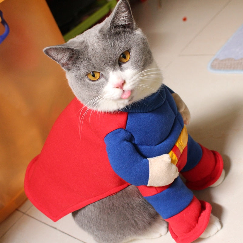 Muscular Superhero Cat Costume - Style for Pets