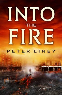 Into The Fire (The Detainee Trilogy #2) - Book Crate