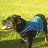 Yoko Hi-Vis Reflective Border Dog's Waistcoat Vest Royal Blue