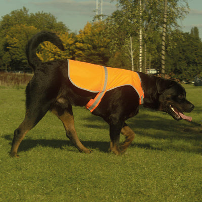 Yoko Hi-Vis Reflective Border Dog's Waistcoat Vest Hi-Vis Orange