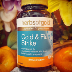 Cold & Flu Strike - Herbs of Gold