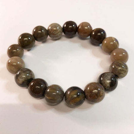 Petrified Wood Beaded Bracelet (OBPW2)