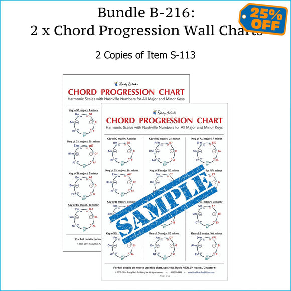 Bundle B-216: TWO Chord Progression Charts, Laminated Reference Wall Posters. FREE SHIPPING – USA & Canada.