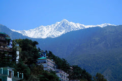 Link to our latest blog 60 Days In McLeod Ganj Dharamsala