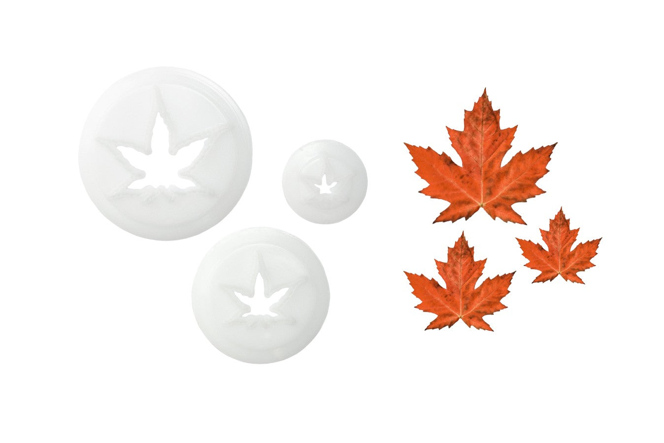 Japanese Maple Leaf Cutters 3 set
