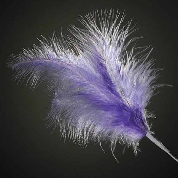 Lilac Feathers 260mm x6