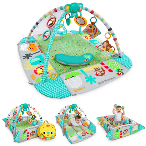 Activity Gym & Playmat