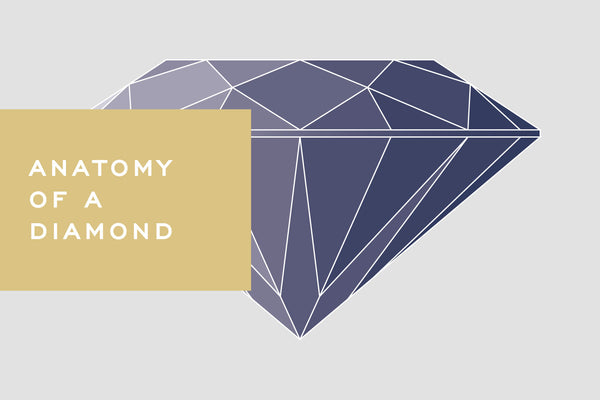Anatomy of a Diamond by Corey Egan