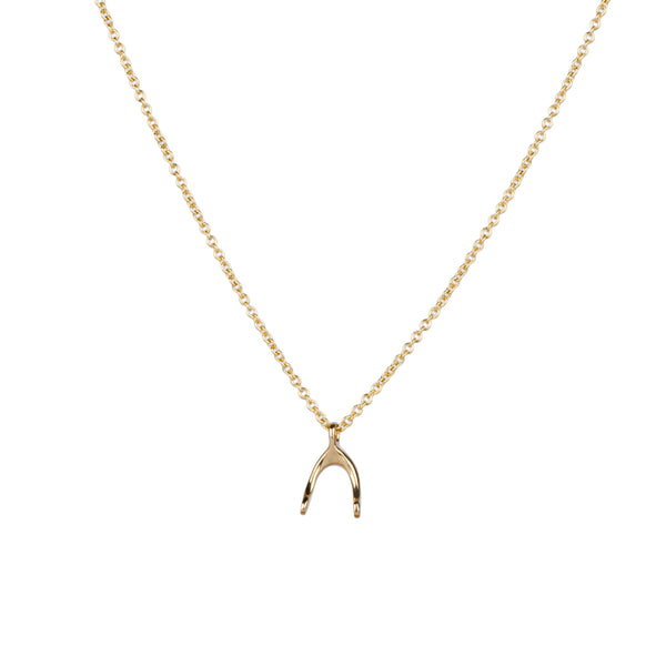 Gold Wishbone Necklace by Corey Egan