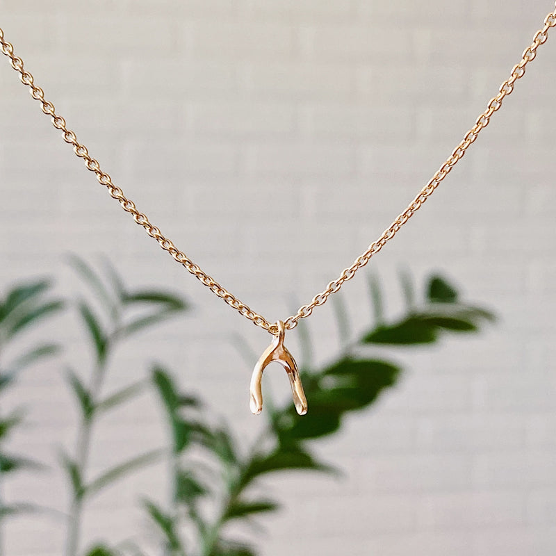 Vermeil Wishbone Necklace by Corey Egan