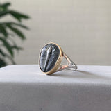 Large Trilobite Ring - size 7