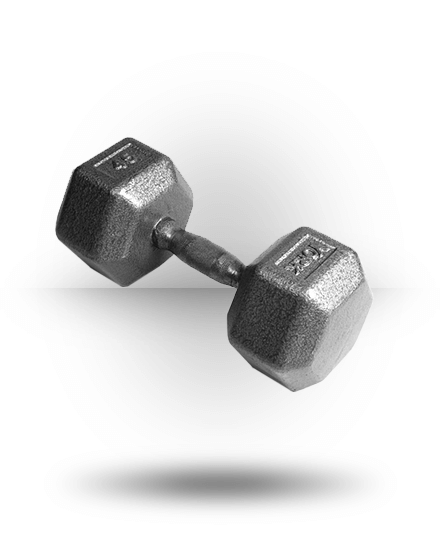 York Barbell Pro Hex Dumbbell With Cast Ergo Handle 45 lb