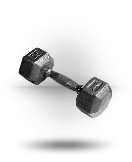York Barbell Pro Hex Dumbbell With Cast Ergo Handle 15 lb