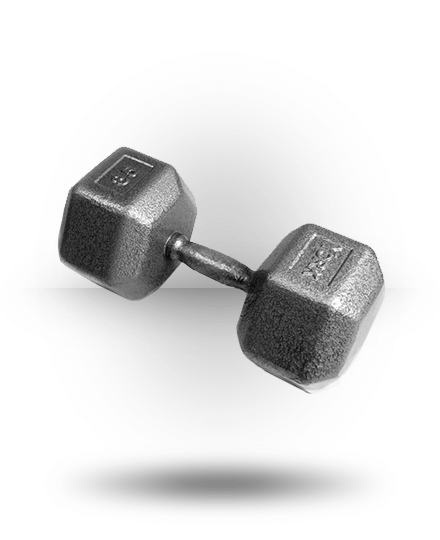 York Barbell Pro Hex Dumbbell With Cast Ergo Handle 85 lb