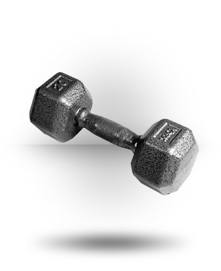 York Barbell Pro Hex Dumbbell With Cast Ergo Handle 20 lb
