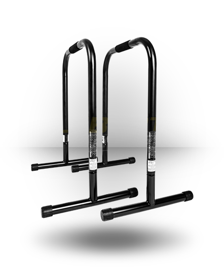 Lebert Fitness Equalizer XL Black