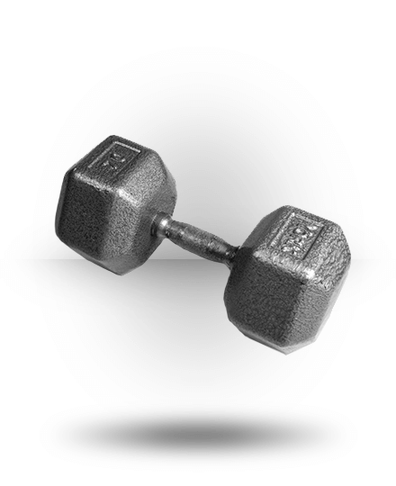 York Barbell Pro Hex Dumbbell With Cast Ergo Handle 70 lb